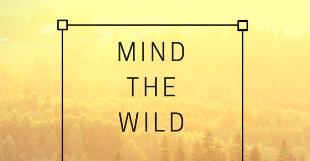Mind the Wild – Youth exchange in Latvia