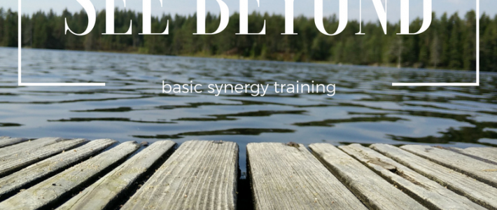 See Beyond 2 – Training course in the Netherlands