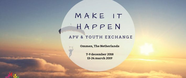Make it Happen! – Youth exchange in  the Netherlands