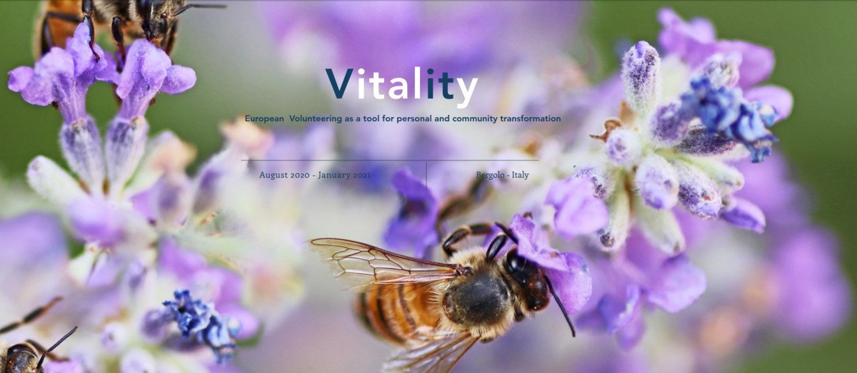smokinya_vitality-volunteering-project-in-italy_001.jpg