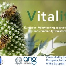 Vitality – volunteering opportunity in Italy