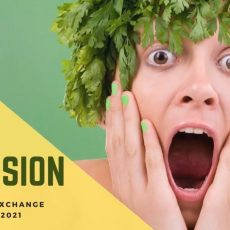 Ecovision – Online Youth Exchange