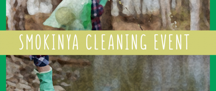 Smokinya cleaning activity